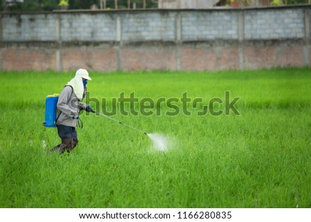 Farmer spraying pesticide to rice by insecticide sprayer with a proper protection in the paddy field. ストックフォト ©