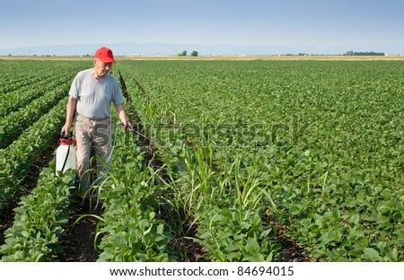 farmer spraying soybean field