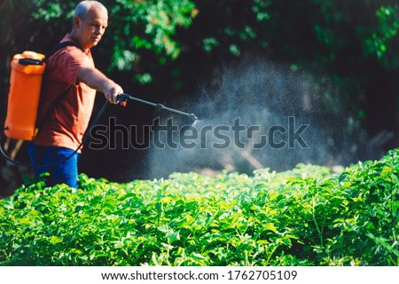 Farmer spraying vegetables in the garden with herbicides, pesticides or insecticides. Foto stock ©