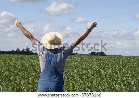 farmer standing in a corn field praying for rain