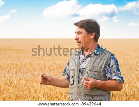 farmer standing in a wheat field, looking at the crop