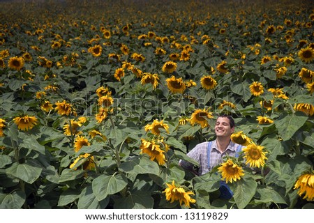 farmer standing in front of a sunflower field