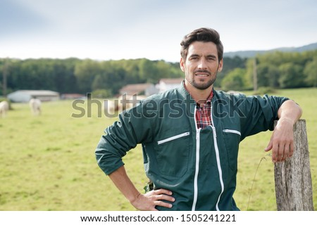 Farmer standing in front of cattle in farm  Photo stock ©