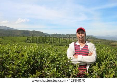 farmer standing on his tea plantation