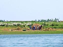 farmer threshing, Jamuna River, Bangladesh