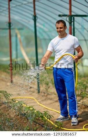 Farmer watering the plants in a hot house #1293385657