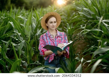 Farmer with a folder stands in a corn field and checks the growth of vegetables. Agriculture - food production, harvest concept.
