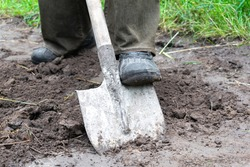farmer, worker man digging soil, ground with shovel in rubber boots in garden, close up
