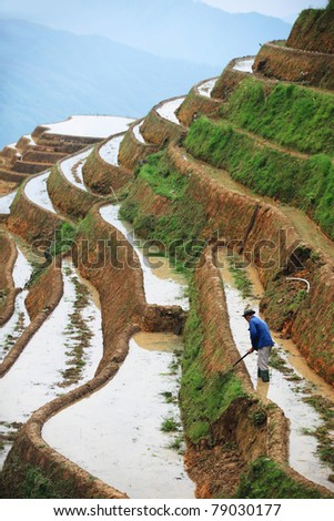 Farmer working in terraced field,Guilin, China