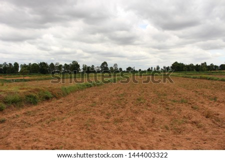 Farmers are refining the fields for farming in the farming season