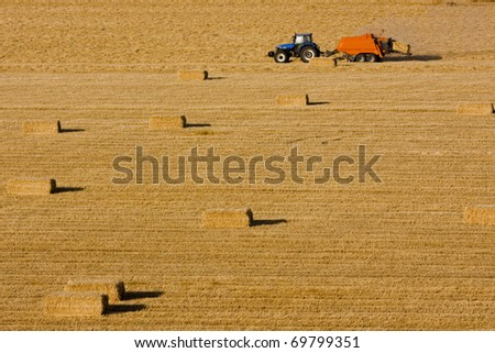 Farmers field full of hay bales with tractor