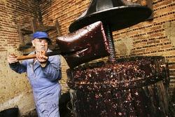 farmers making wine of grape  in traditional winepress  in  Villarejo de Orbigo, Leon , Spain , slow sync flash