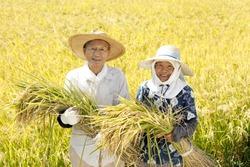 Farmers of Japan celebrates good harvest