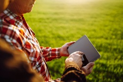 Farmers reading and discussing a report in a tablet computer on an agriculture field at sunset. Checking wheat field progress.The concept of the agricultural business.