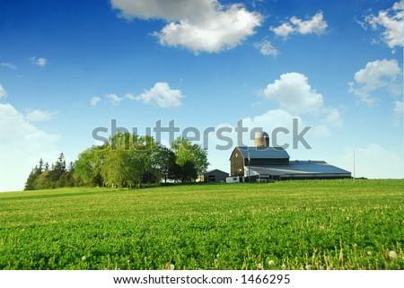 Farmhouse e celeiro entre campos verdes