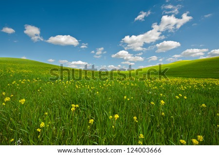 Farmhouse and Green Sloping Meadows of Tuscany #124003666