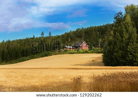 Farmhouse on edge of forest