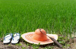 Farming equipment in the rice field with copy space