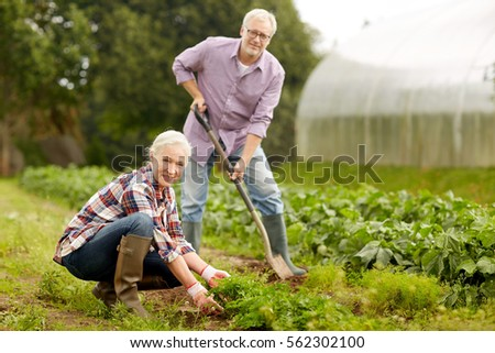 farming, gardening, agriculture and people concept - happy senior couple working in garden at summer farm