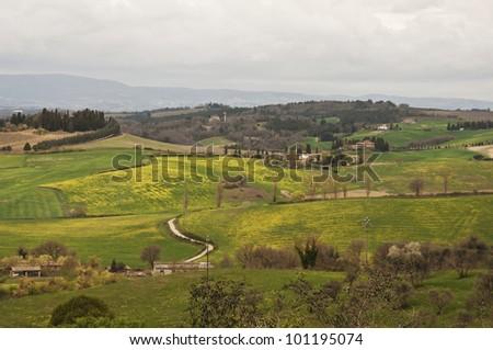 farmland and countryside in Chianti, Tuscany, Italy
