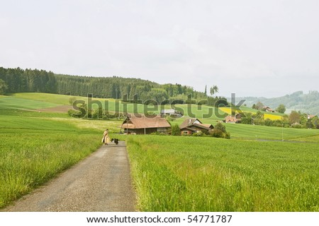 farmland and man with dogs