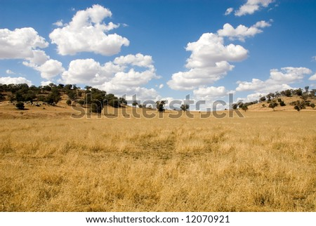Farmland, in the Central West region of New South Wales, Australia