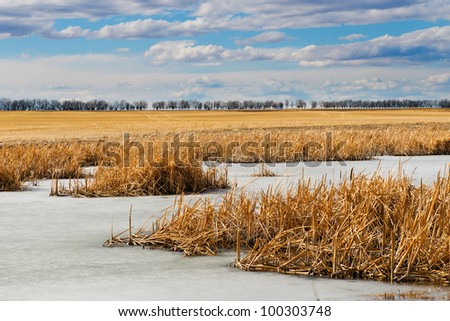 Farmland in the prairies in spring, with frozen ponds and blue skies