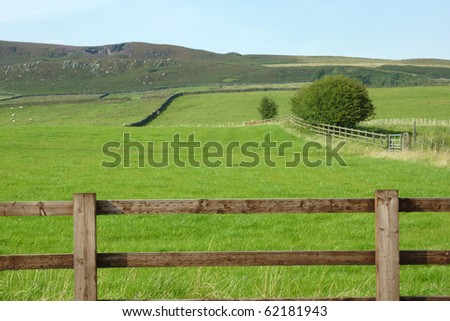 Farmland in Yorkshire Dales with sheep in background