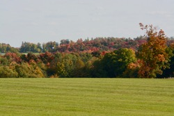 Farmland of hay fields with harvested hay in round bales with colourful fall background