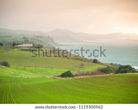 Farmland on coastline. Tollymore Rd Viewpoint, Table Cape, Tasmania, Australia