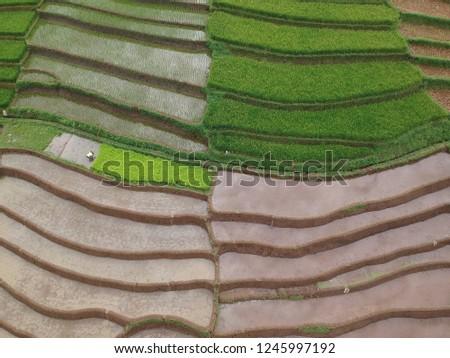 farmland terracing system #1245997192