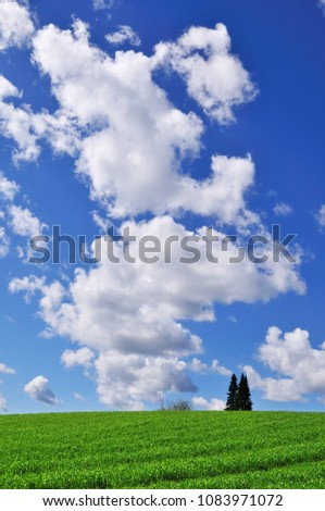 Farmland with trees and cumulus clouds in the sky. #1083971072