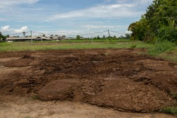 Farmyard manure and mud texture background with blue sky in Thailand.