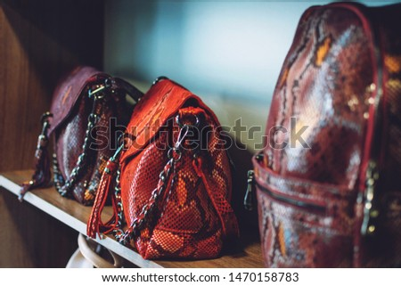 Fashion trend Snakeskin Print handbags on shelf in a store, shop. Sale, shopping, accessories concept.