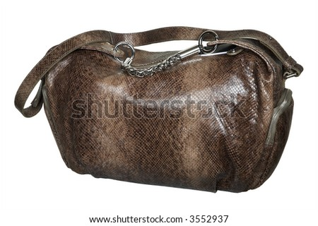 Fashionable brown bag on a white background