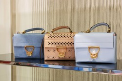 Fashionable women's handbags in the store. Woman handbag in a showcase of a luxury store.
