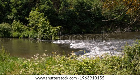 Fast flowing water on Ave River near Vila do Conde, Portugal. Dense vegetation on river bank. Foto stock ©