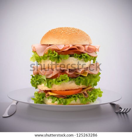 Fast food big sandwich with lettuce, tomato, smoked ham and cheese on plate