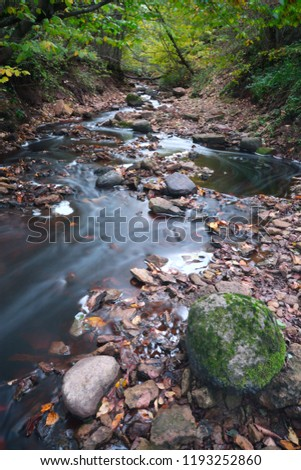 Fast mountain river in deciduous forest in early autumn. Photographing landscape with water on a long exposure. #1193252860