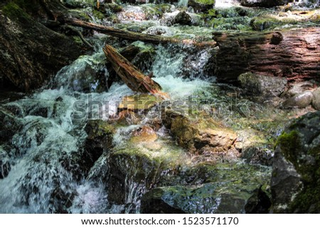 Fast mountain stream with clear clear water