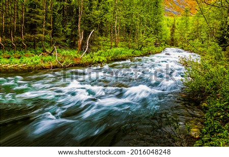 Fast river flow in the forest. The river descends rapidly. The river current were too strong. Flow of the river