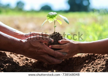 father and children help plant trees to help reduce global warming. #738568048