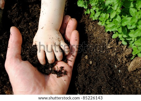 father and daughter hands play with soil in the garden