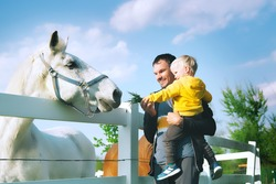 Father and son are feed a horse at countryside. Family on a farm at springtime. Toddler boy playing with pets outdoors.
