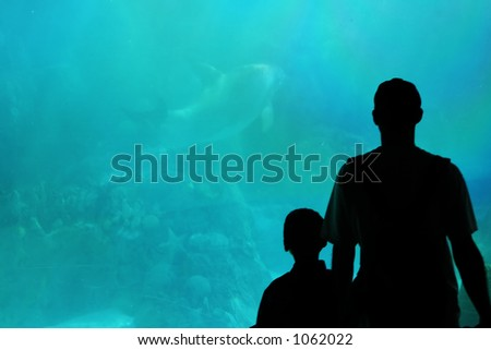 father and son in aquarium