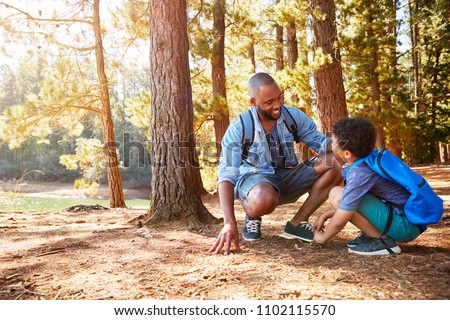 Father And Son On Hiking Adventure In Woods By Lake