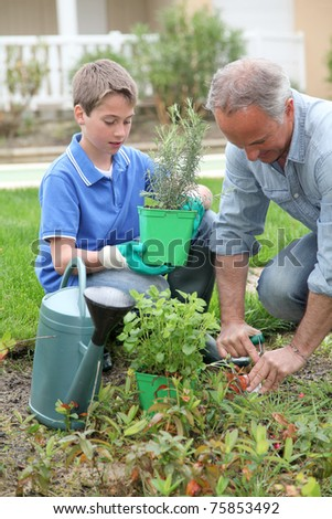 Father and son planting flowers in house garden