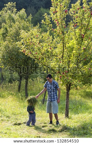 Father and son playing in apple orchard under a tree.