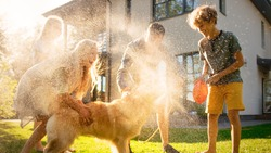 Father, Daughter, Son Play With Loyal Golden Retriever, Dog Tries to Catch Water from Garden Water Hose. Family Spending Fun Outdoors Time Together. Sunny Day Idyllic Suburban Home.