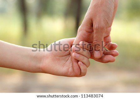 father's hand lead his child son in summer forest nature outdoor, trust family concept #113483074